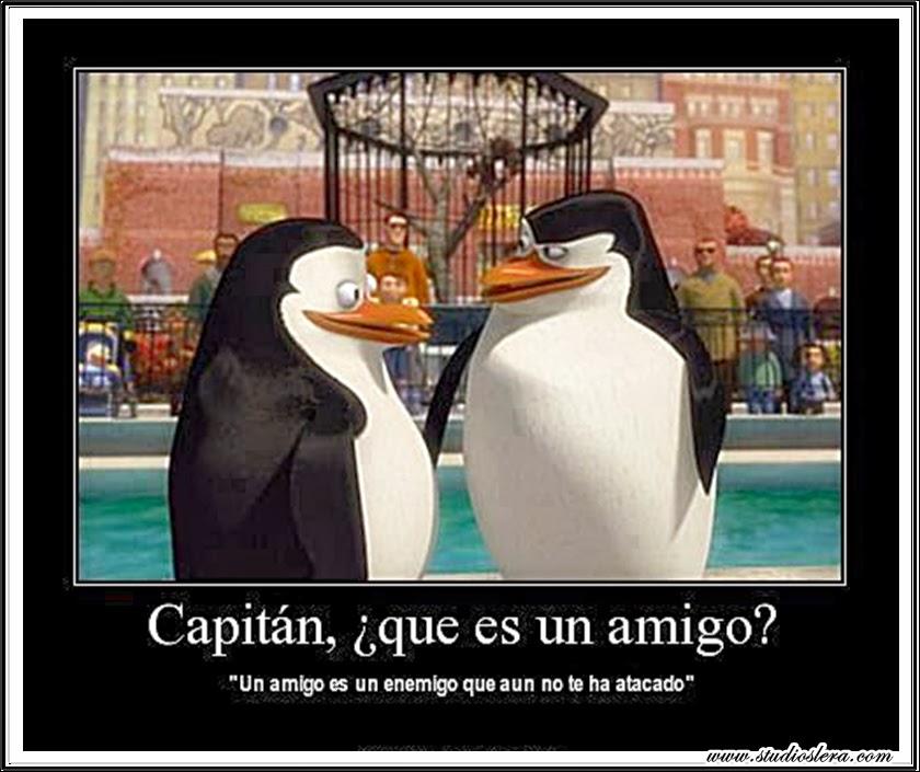 studioslera.com pingüinos amigos