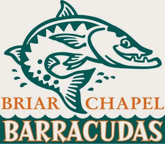 Introducing the Briar Chapel Barracudas Swim Team