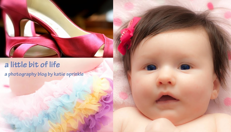 A Little Bit of Life