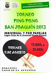 TORNEOS SAN JOAQUÍN 2013