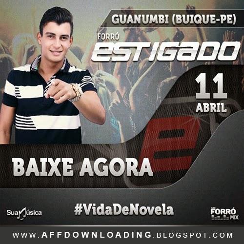 Baixar - Forró Estigado - Guanumbi - Buíque - PE - 11.04.2015