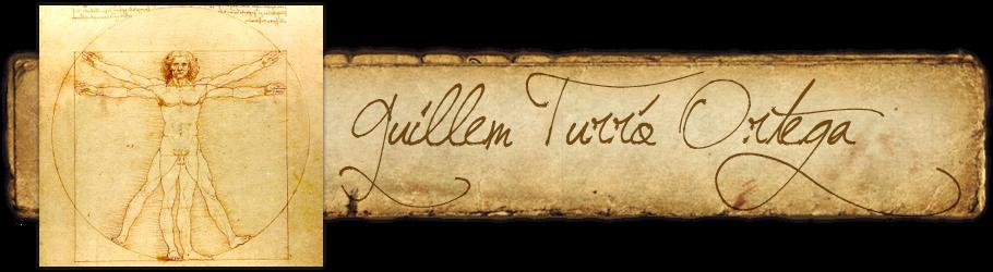 Guillem Turró Ortega