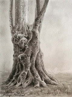 step 4, creating a charcoal sketching of a tree by Manju Panchal