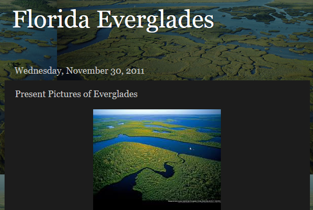 http://learnabouttheeverglades.blogspot.com/2011/11/blog-post_5686.html