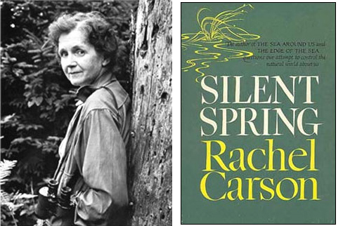 a research on silent spring a book by rachel carson This lesson reviews rachel carson's classic ''silent spring'', which was published in 1962 read on to analyze the book's meanings and examine the impact it had on the pesticide industry in america.