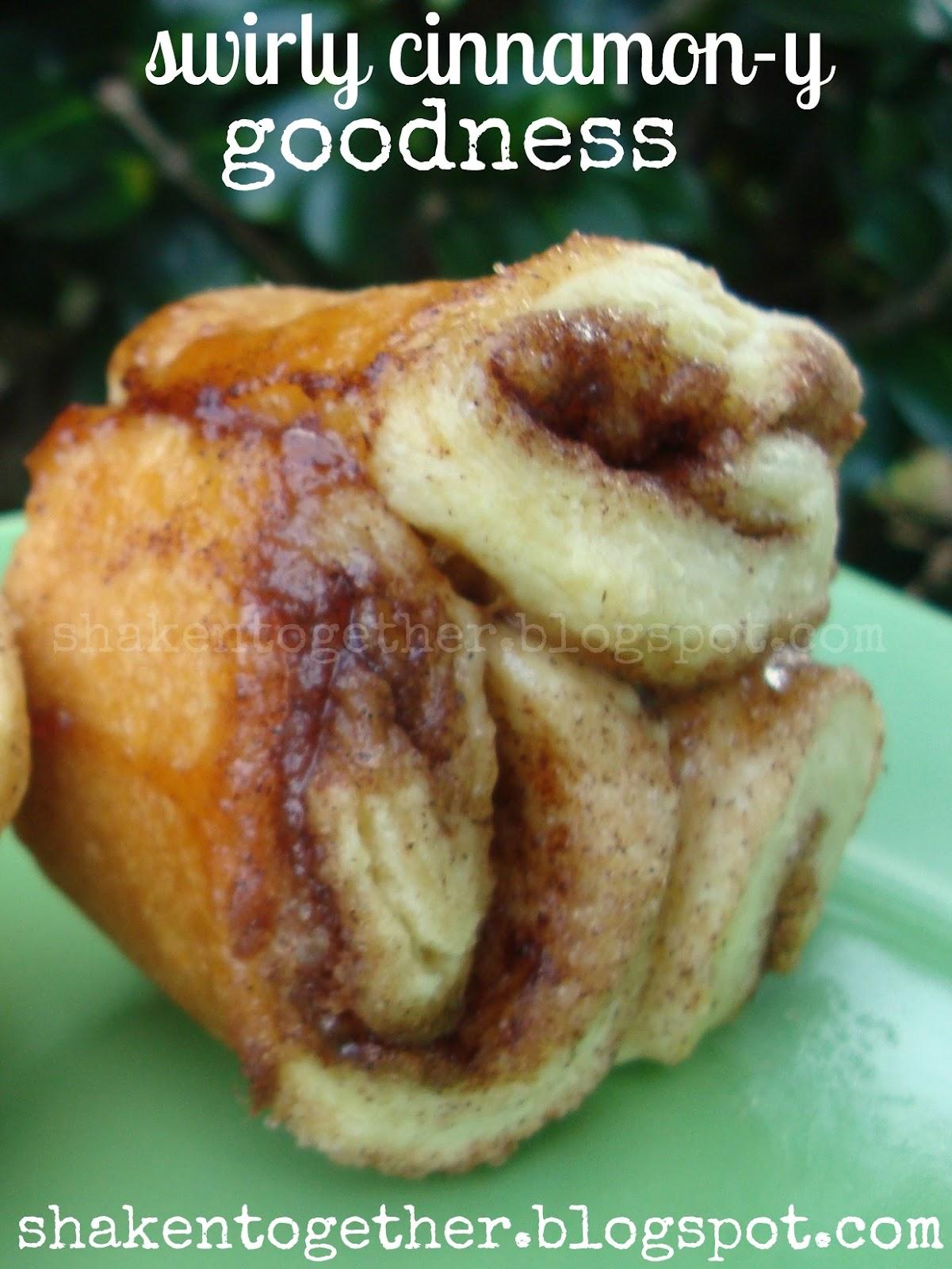 {taste this} cinnamon rolls from refrigerator biscuits ...