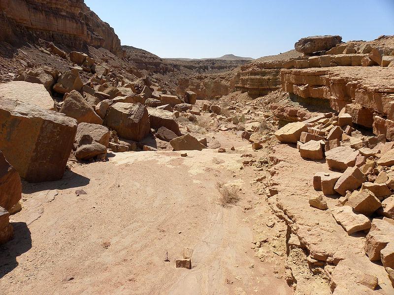 Materias qu agentes influyen en la formacion de los suelos for Formacion de los suelos