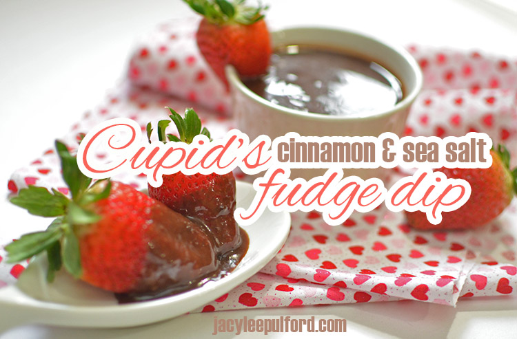 Cupid's Cinnamon & Sea Salt Fudge Dip