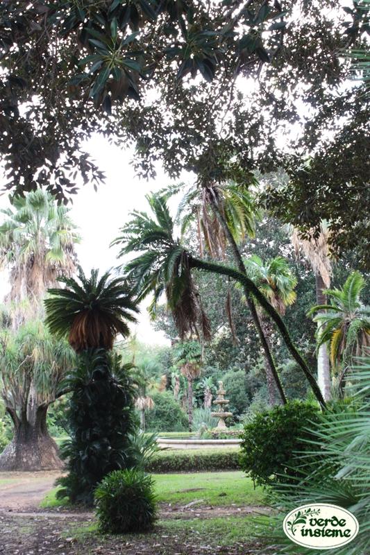 Il giardino di villa malfitano a palermo - Il giardino di ballaro palermo ...
