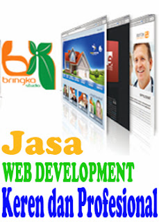 web development bringka.com