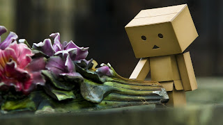 Sad Danbo Wallpaper