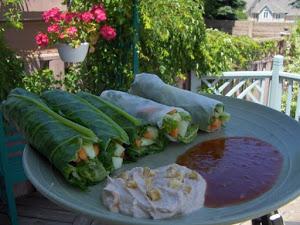 Raw Thai Garden Rolls