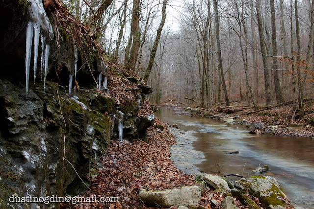 Icicles hanging by creek bed
