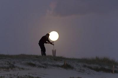 la luna parece una planta