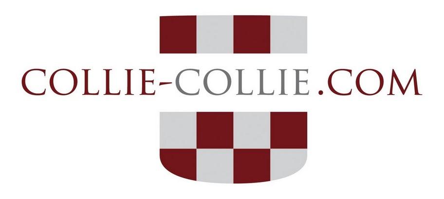 Collie-Collie