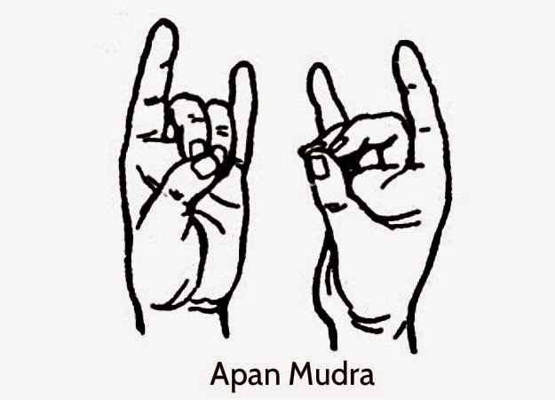 Image result for apan mudra stylisé