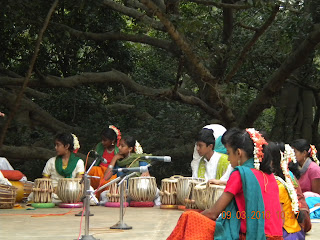 banyan tree behind the tabla recital