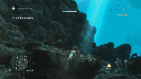 Assassin's Creed 4 Black Flag - Under Sea