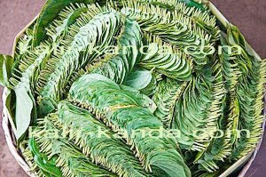 листья калир канда