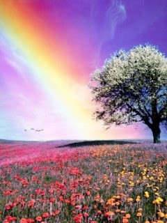 Beautiful Nature Pictures Gallery Wallpaper For Mobile Phones Images Photos