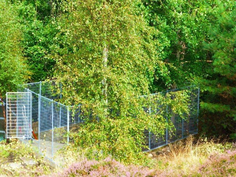 Mio vår Mio Att bygga hundgård