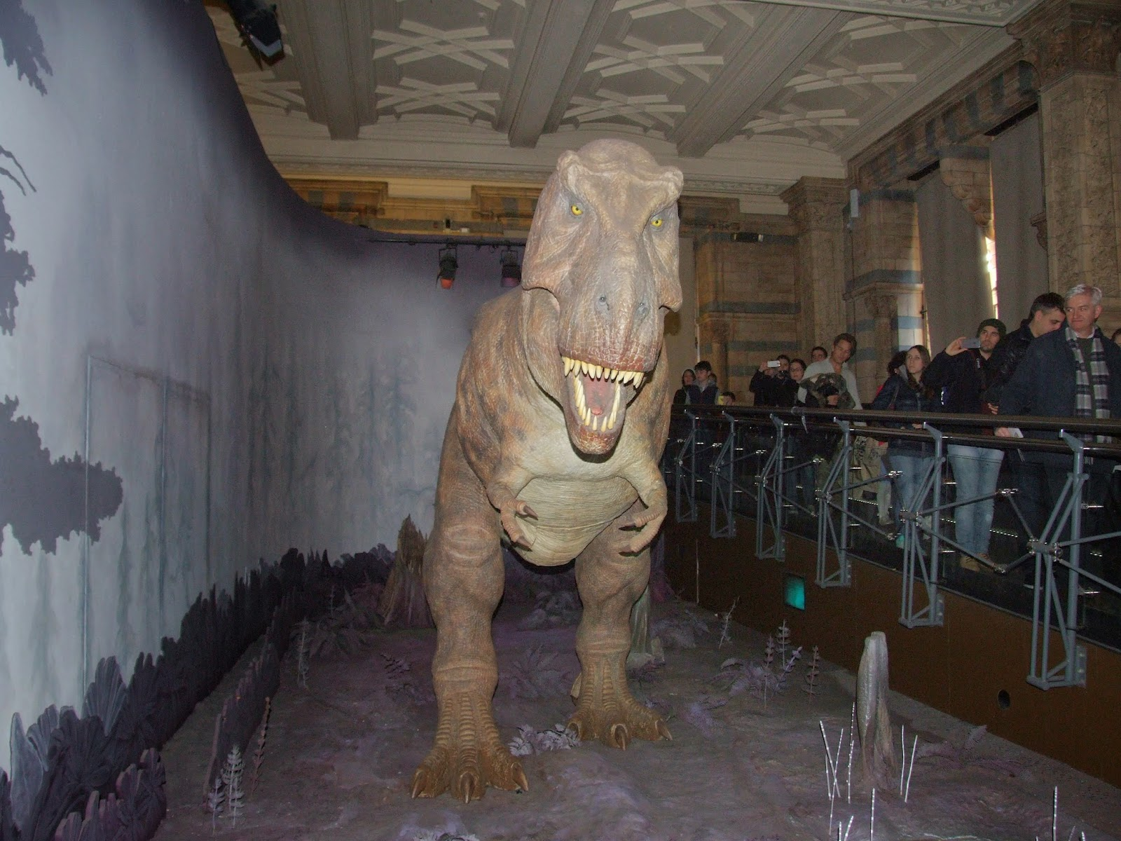 Tyranozaur w Muzeum Historii Naturalnej.