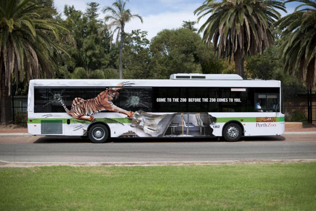 Perth Zoo: Tiger on a bus advertisement