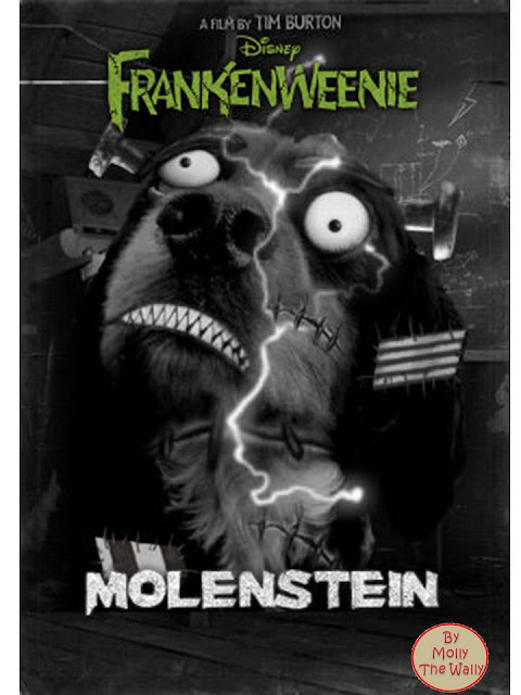 Molly The  Wally does Frankenweenie.