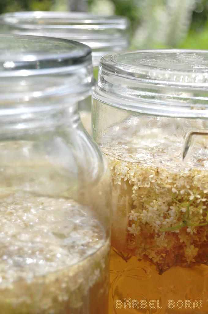 Aus Holunderblüten und Apfelsaft kann man leckeres Gelee kochen