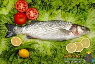 السمك لفروة نظيفة ونقية