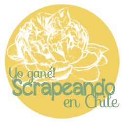 http://scrapeandoenchile.blogspot.com/