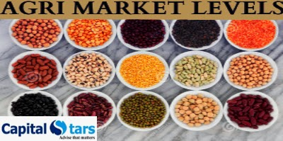 Chana Tips, Turmeric Tips, Soyabean Tips, agri commdity tips, free agri calls, Dhaniya Tips , AGRI NCDEX/MCX Tips