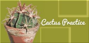 Cactus Practice  Cactus+practice+buttonklein