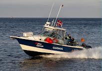 Ny båd