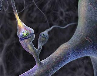 Souvenaid Improves Memory in  Alzheimer's Patients