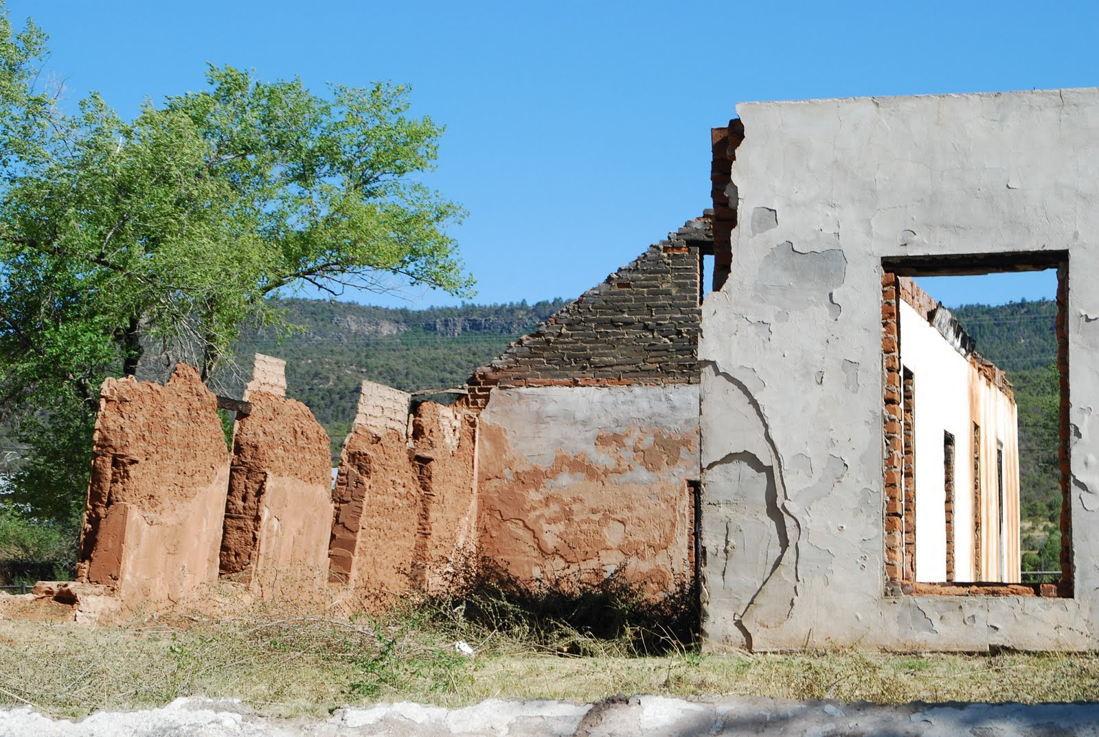 Desert Horses Fort Apache Arizona