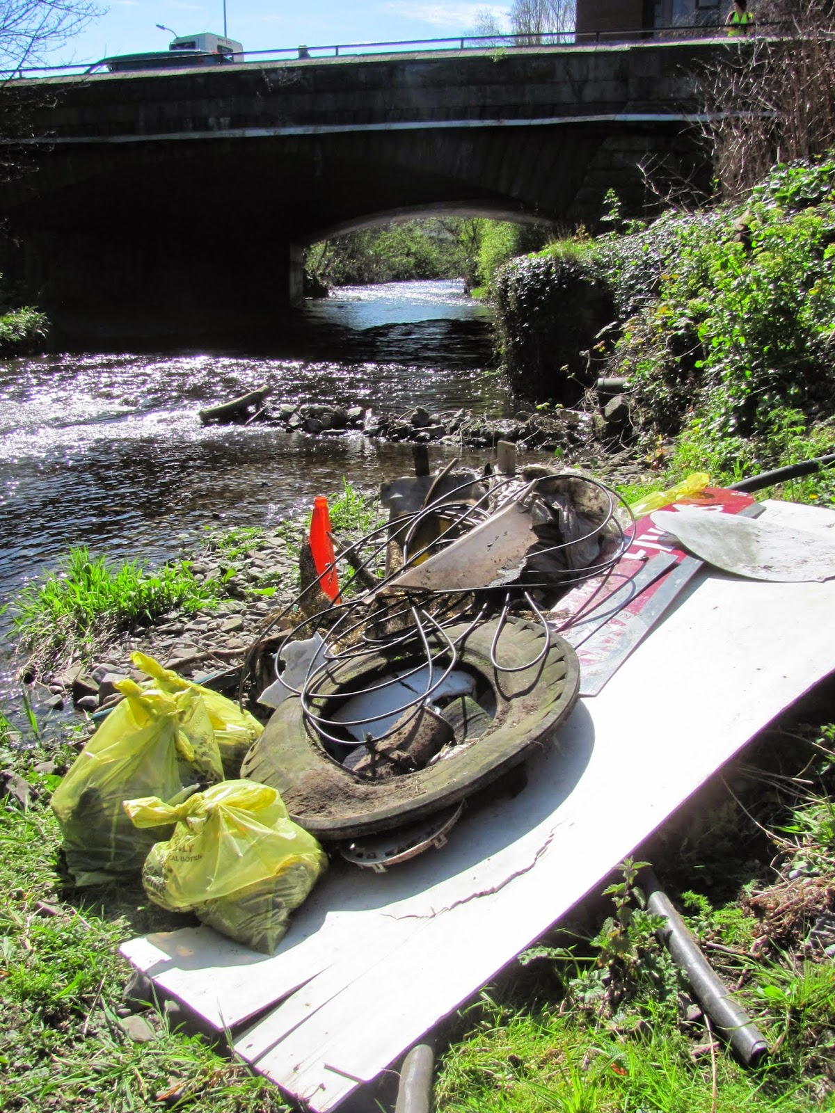 Donnybrook River Dodder Rubbish 2015