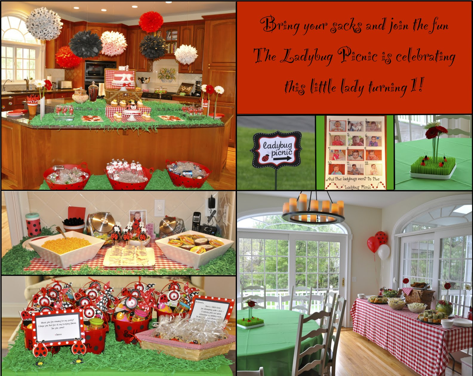 Party of the Week Ladybug Picnic Birthday
