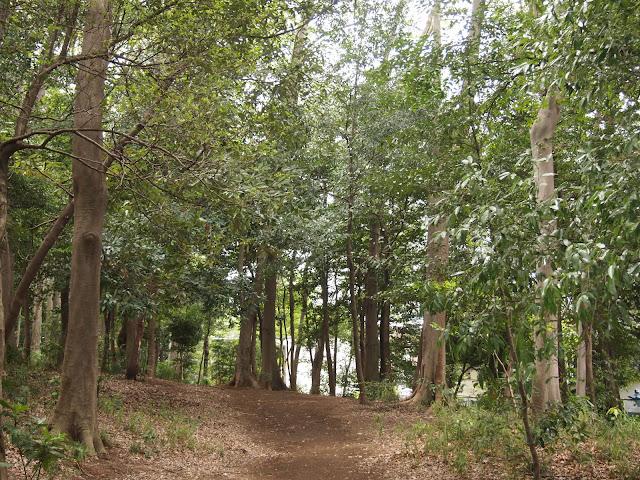 稲荷山憩いの森