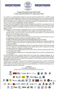 Informe CNSP 2010 - 2011