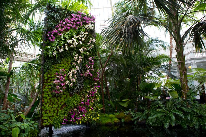 The Orchid Show Fashion Installation