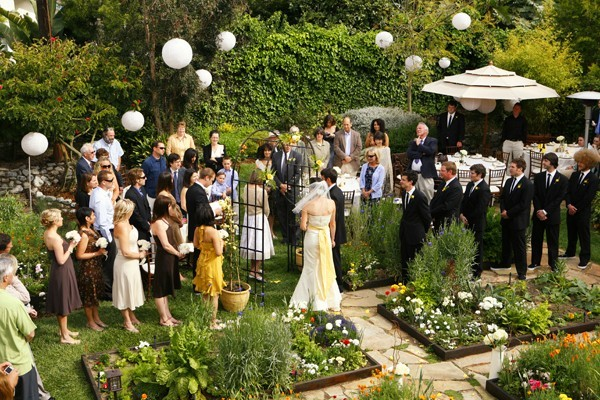 Backyard Wedding Theme