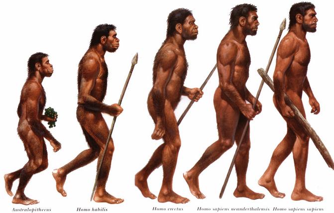 Jenis-jenis dan ciri manusia purba di Indonesia