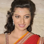 Hamsa Nandini Hot Photos in Half Saree at CCCup (Crescent Cricket Cup Trophy) 2013 Launch