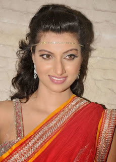 Hamsa Nandini in Spicy Half Saree at CCCup 2013 Launch Stunning Beauty