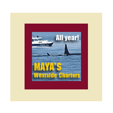 Courtesy Link to Maya's Westside Charters