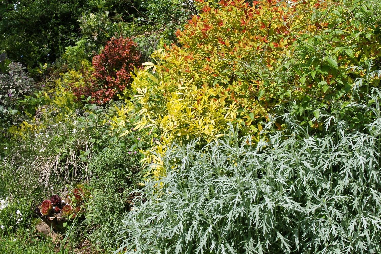 Mes motsdoubs petit tour de jardin - Petit jardin plan de la tour tours ...