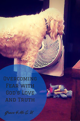 Being paralyzed by fear is not fun, but God promises to be with you. He puts his angels in charge of protecting you. So use faith in God's love and trust Him as you take one step at a time. | Grace 4 Me & U