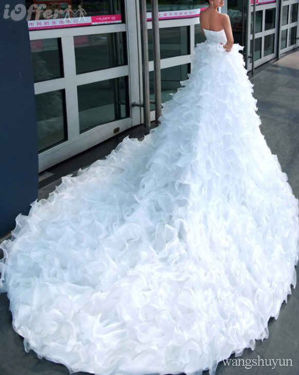 Big tail white wedding dresses ideas wedding dresses for Big white wedding dresses