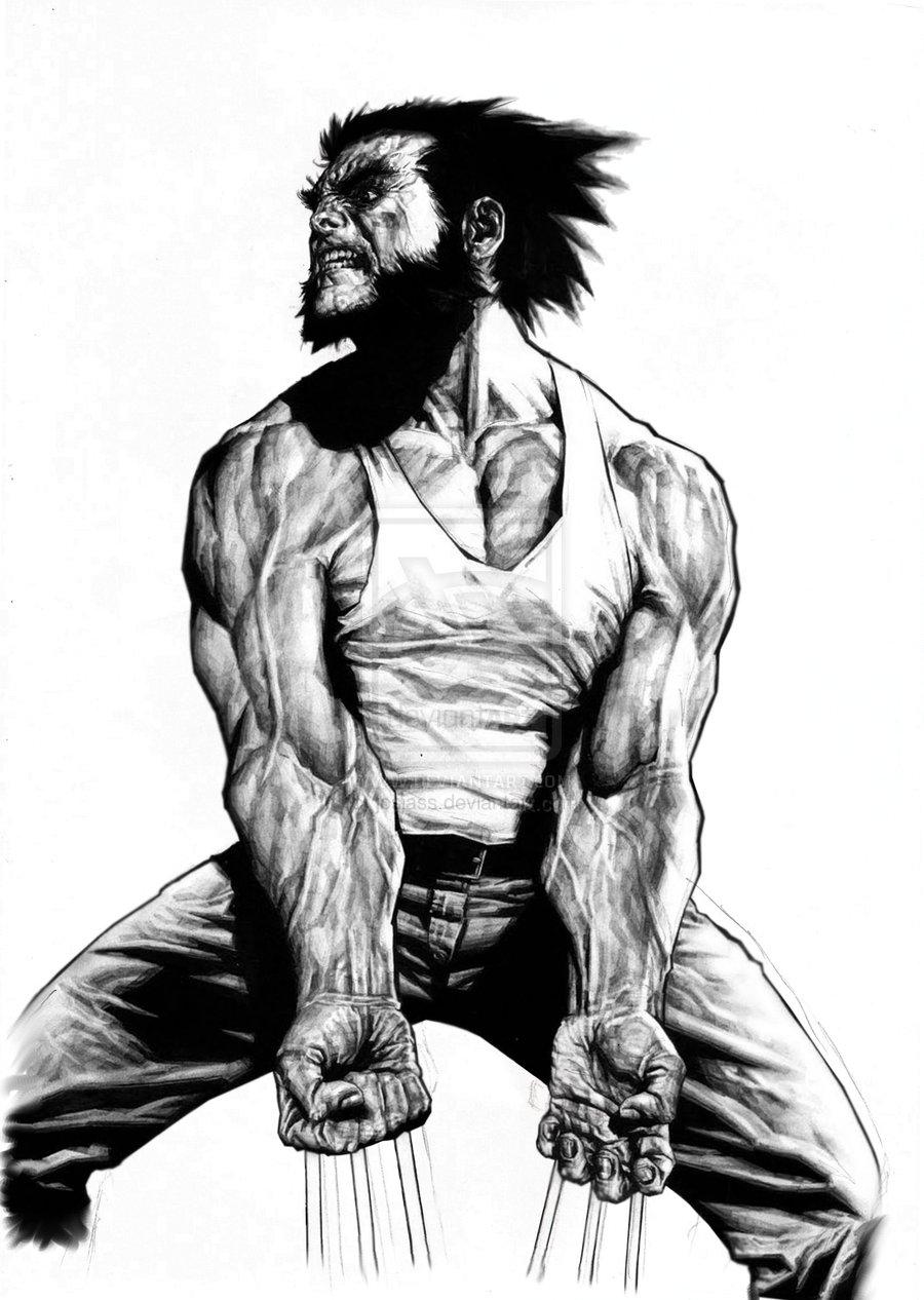 Desenhos de josias silveira wolverine coloriza o - Wolverine dessin ...
